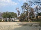 ねむのき公園