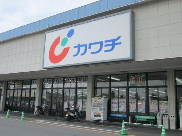 カワチ薬品 佐野店の画像1