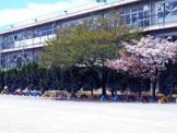 草加市立新田小学校
