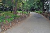 東京都立戸山公園(大久保地区)