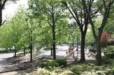 野庭中央公園