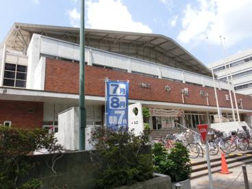 区立中野体育館の画像1