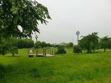 都立尾久の原公園の画像1