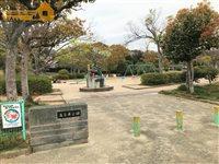 高丘東公園の画像2