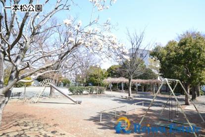 一本松公園の画像1
