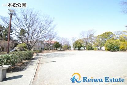 一本松公園の画像4