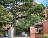 私立目白大学短期大学部
