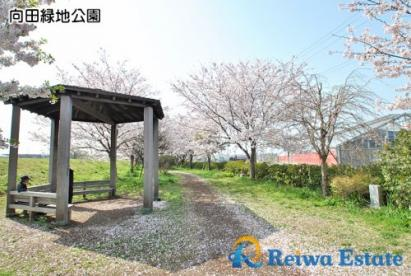 向田緑地公園の画像1