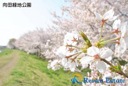向田緑地公園の画像2