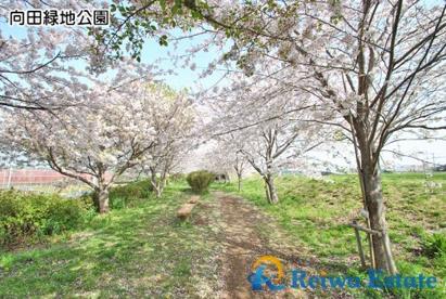 向田緑地公園の画像3