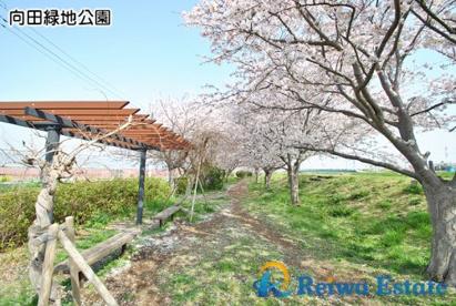 向田緑地公園の画像5