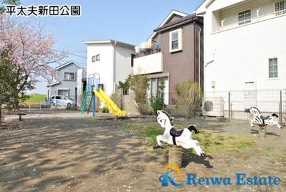 平太夫新田公園の画像3