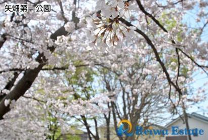 矢畑第一公園の画像3