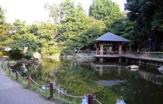 杉並区立蚕糸の森公園