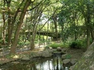 林試の森公園の画像1