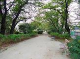 杉並区立玉川上水第二公園