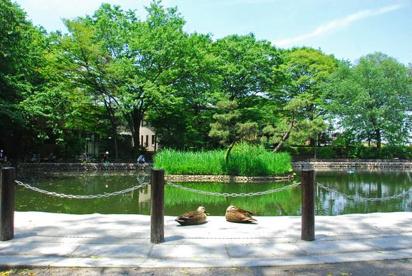 赤塚溜池公園の画像1