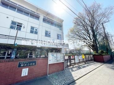 柳沢小学校の画像1