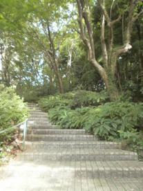 えびね公園の画像1