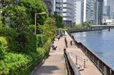 高浜運河遊歩道
