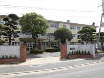 金武中学校