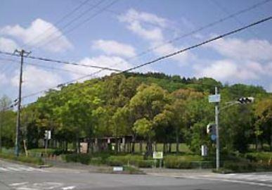 春日台公園の画像1