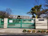 縄手北小学校