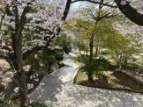 朝日ヶ丘北公園