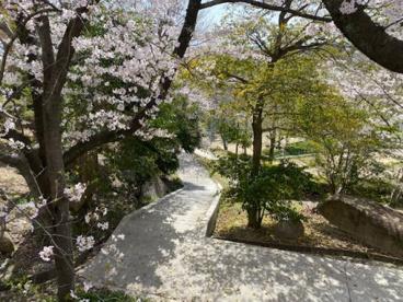 朝日ヶ丘北公園の画像1
