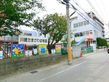 川崎たまがわ幼稚園の画像1