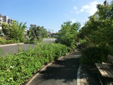 志茂ゆりの木公園の画像1