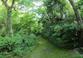 川崎市民プラザ公園