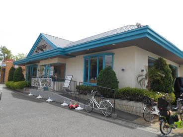 Hawaiian Cafe & Restaurant Merengue(ハワイアンカフェ&レストラン メレンゲ) 岸根公園店の画像1