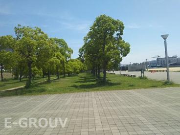なぎさ公園の画像3