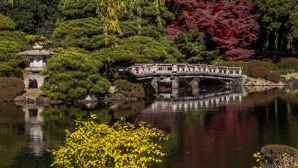 新宿御苑の画像3