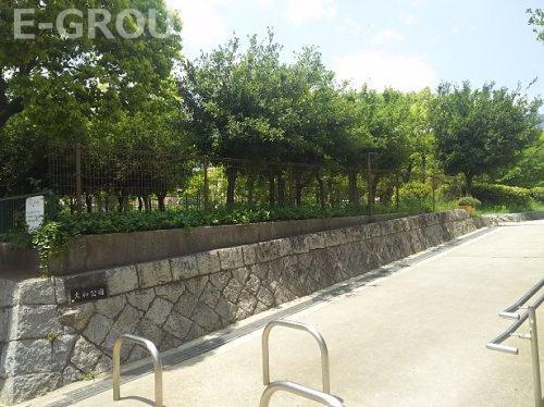 大和公園の画像
