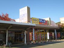 ゲオ鳴門店
