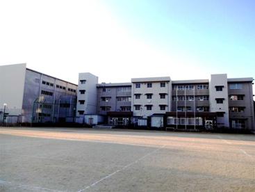 草加市立高砂小学校の画像1