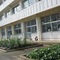 牛久市立牛久第二小学校の画像1