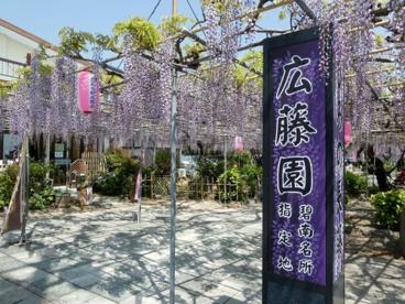 広藤園の画像1
