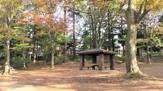 石神井公園 くつろぎ広場