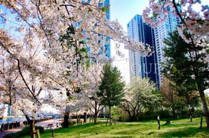 港南緑水公園の画像1