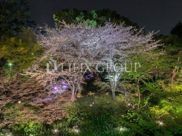 御殿山庭園の画像1