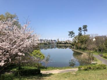 自由ケ丘中央公園の画像3