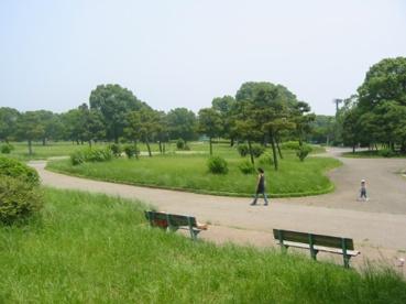 篠崎公園の画像1