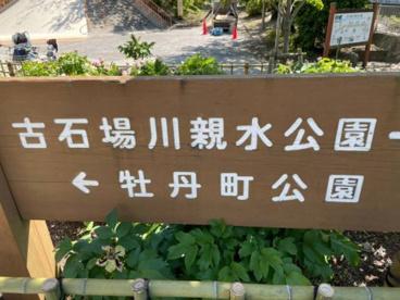 古石場川親水公園の画像3