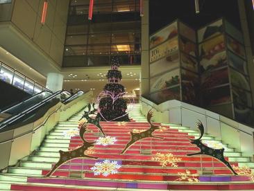 川崎ルフロンの画像3