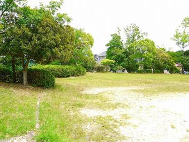 丸山第2号街区公園の画像2