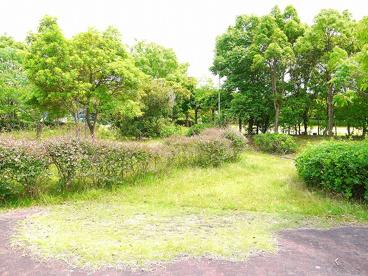丸山第2号街区公園の画像3