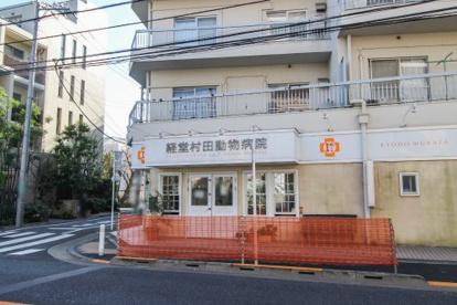 経堂村田動物病院の画像1